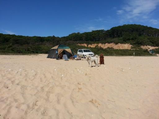 Наш лагерь и никого рядом